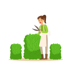 Young woman gardener working with hedge shear vector