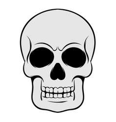 skull icon icon cartoon vector image