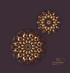two flower oriental mandalas vector image