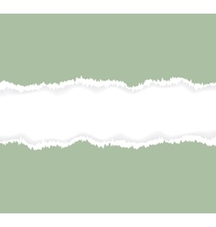 Background of green torn paper vector image