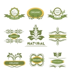 Organic elements labels logo vector image