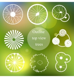 Outline set Trees top view for landscape design vector