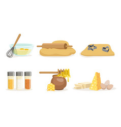 products ingredients and utensils for cooking vector image