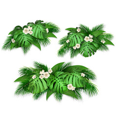 summer composition with exotic leaves vector image