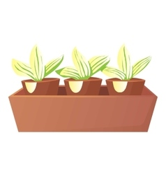 Plants in pots icon cartoon style vector image