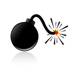 Bomb and shadow vector image vector image