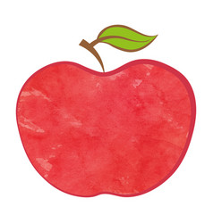 bio apple isolated food icon vector image