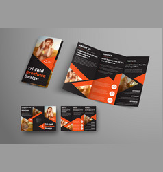 design of a tri-fold brochure with orange vector image