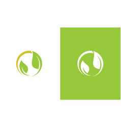green leaf beauty logo vector image