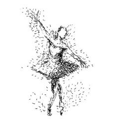 Hand drawing of ballerinas vector image