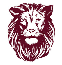 lion hand drawn llustration realistic vector image
