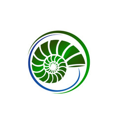 Sea shell modern vector