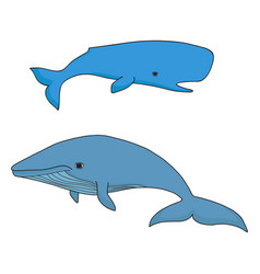 cartoon sea whale and cachalot vector image vector image