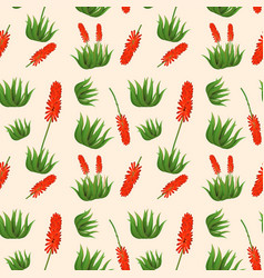 aloe vera flower seamless pattern vector image