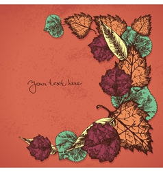 Autumn background with leafs vector image vector image