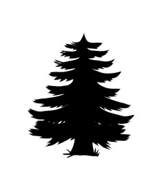 black silhouette of pine tree icon isolated on vector image