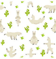 Camelids family collection alpaca yoga graphic vector