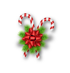 holiday red bow fir tree branches candy canes vector image
