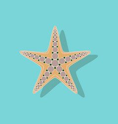 Paper sticker on background of starfish vector
