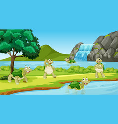 Scene with many turtles in park vector