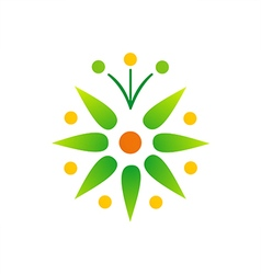 green leaf bio star logo vector image