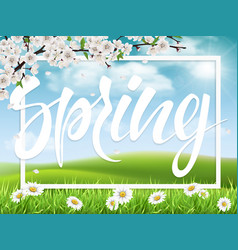 lettering spring on landscape background vector image