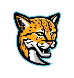 margay head mascot vector image