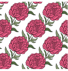 seamless floral pattern peony flowers vector image