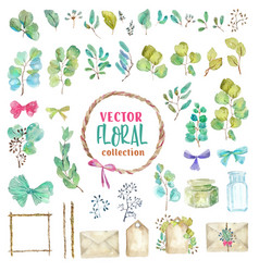 set of watercolor green plant elements and vector image