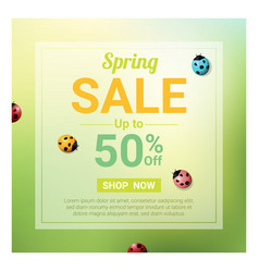 Spring sale banner with colorful ladybugs vector