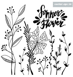 Summer flower vector