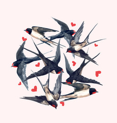 watercolor swallow bird composition vector image