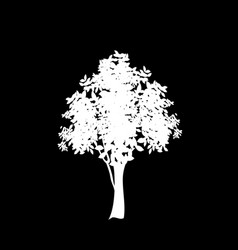 White silhouette of foliate tree icon isolated on vector