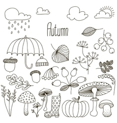 Hand drawn doodle Autumn icons set vector image