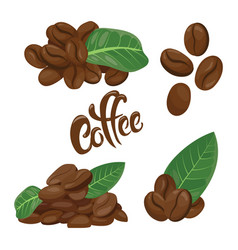 a set coffee beans a collection coffee vector image