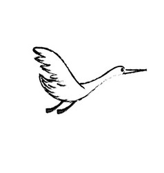 Figure beauty stork animal with wings vector