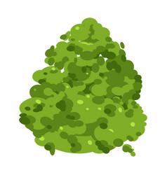 green small bush gardening landscaping vector image
