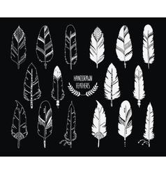 Hand drawn set of feathers and silhouette isolated vector