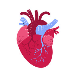 Human heart medicine in cartoon style vector