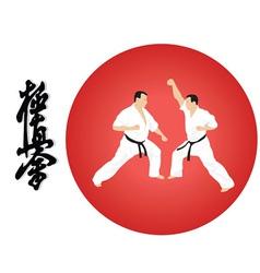 On karate vector