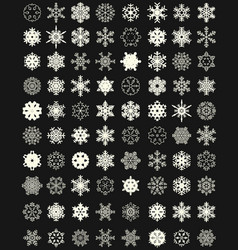 set different snowflakes vector image