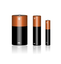 Three batteries on a white background vector image