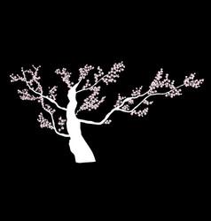 abstract floral sakura flower japanese natural vector image
