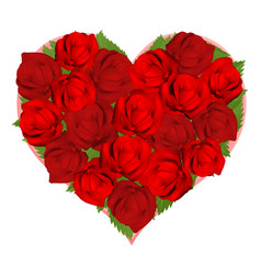 beautiful red roses in heart shape vector image vector image