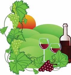 wine yard vector image vector image