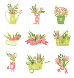 bouquets of flowers in vases and pots of various vector image