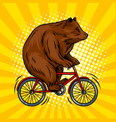 Circus bear on bicycle pop art vector