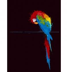 parrot parakeet vector image