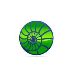 sea shell modern vector image
