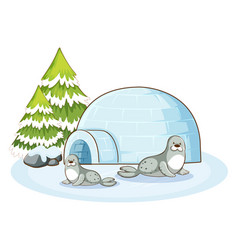 seals and igloo in winter vector image